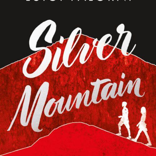 06-Silver mountain