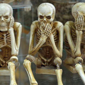 skeletons-1617539_1920